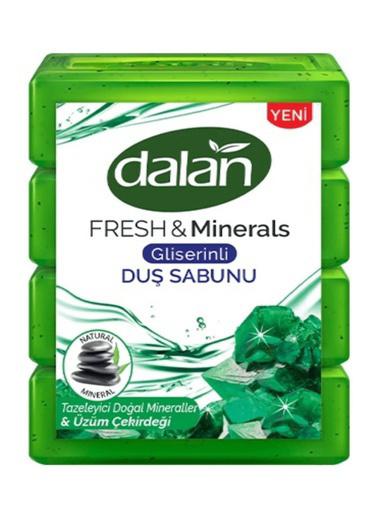 Dalan Dalan Fresh & Minerals Üzüm Çekirkeği Kalıp 150x4=600 Gr Renksiz